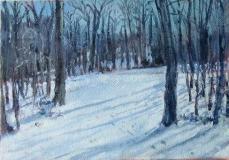 Winter-Mom's Land, 2009